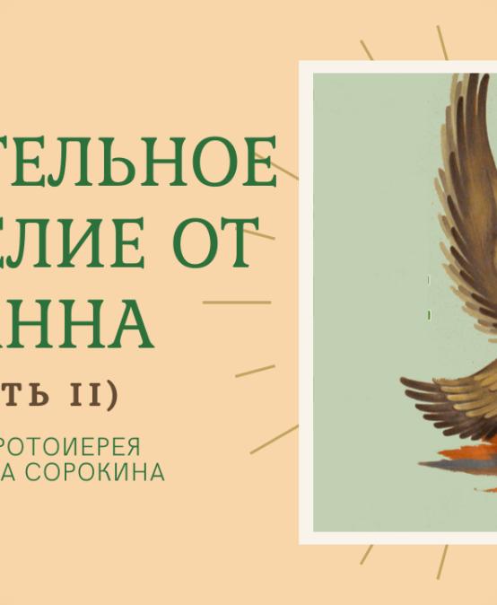 ВИДЕО: Удивительное Евангелие от Иоанна (2 ч.) | Протоиерей Александр Сорокин