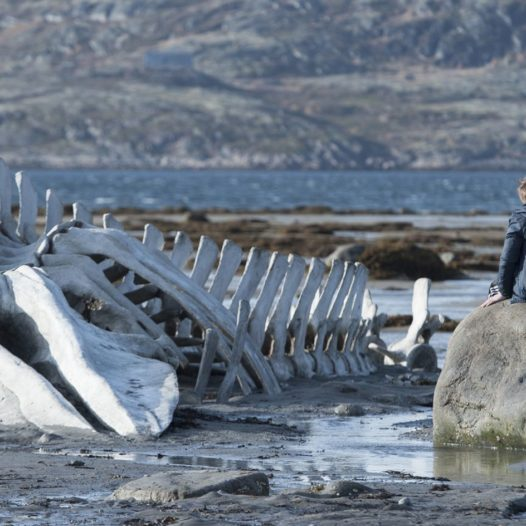 ВИДЕО: Левиафан — морское чудовище из Библии
